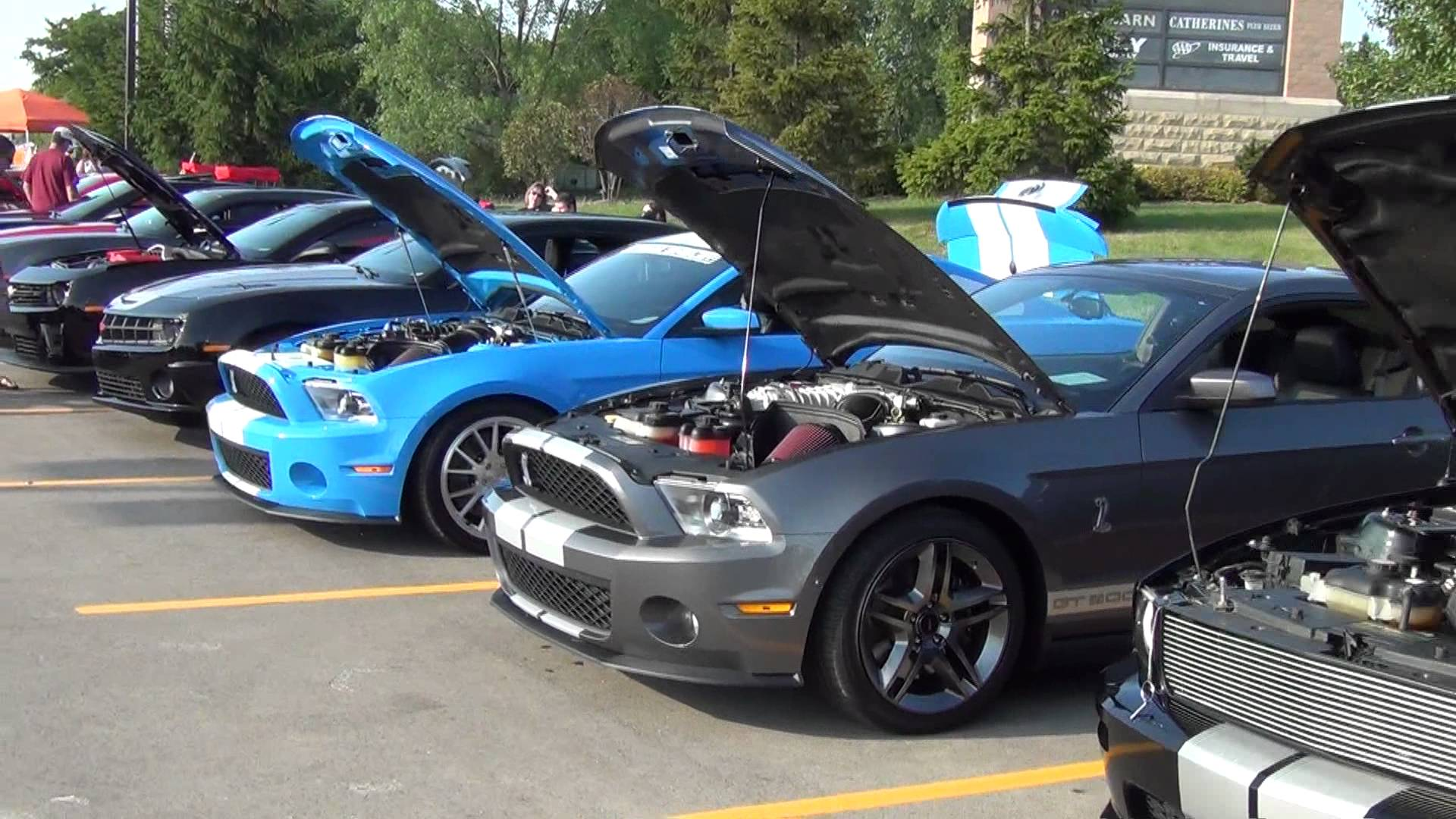 modern muscle cars - CapeStyle Magazine Online