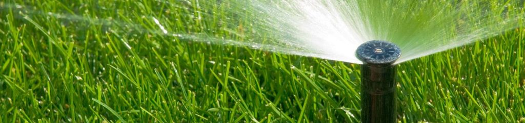Cape Coral's One-Day Watering Schedule -- Countywide Mandatory Irrigation Restrictions
