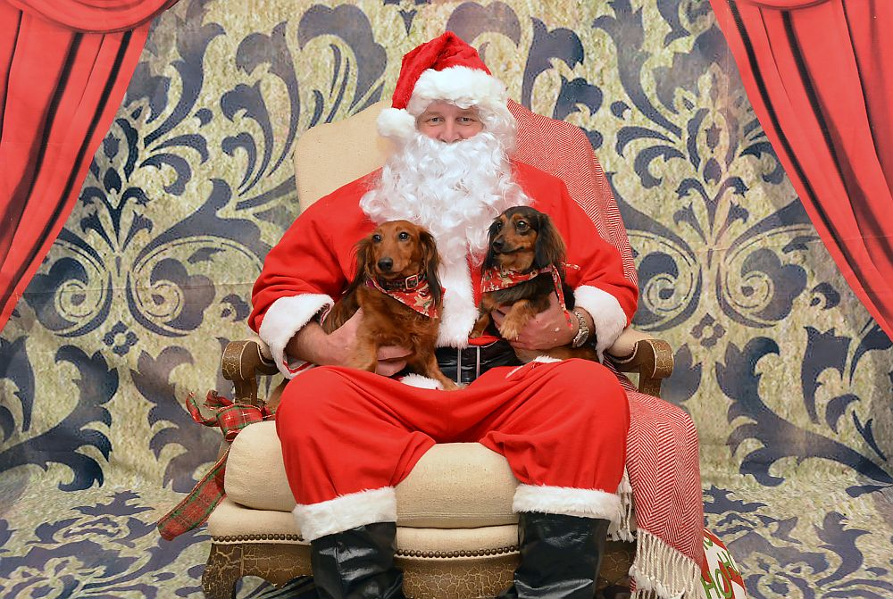Yappy Hour At Cape Harbour To Host Santa Photos