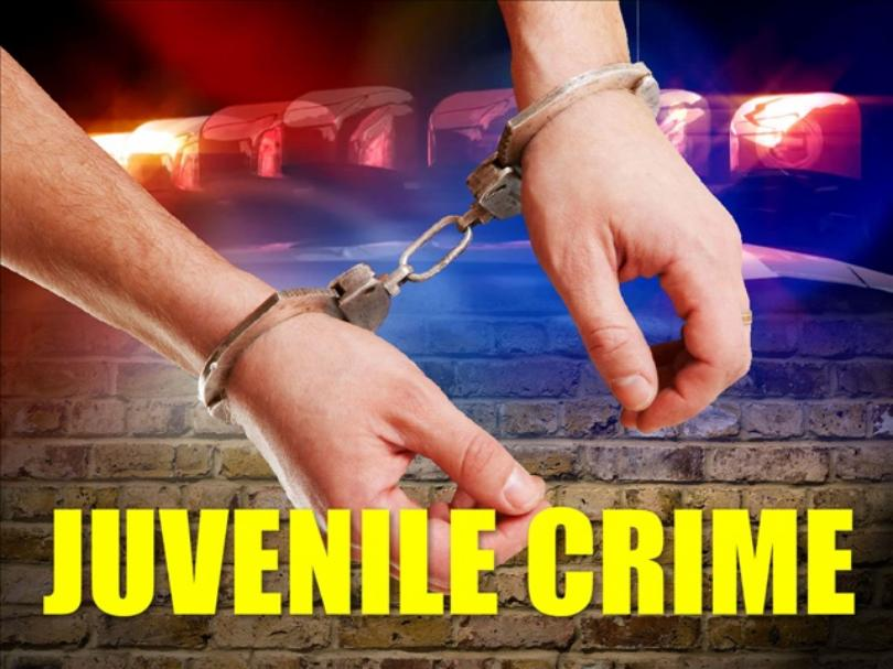Two (2) Vehicle Burglars Caught in the Act