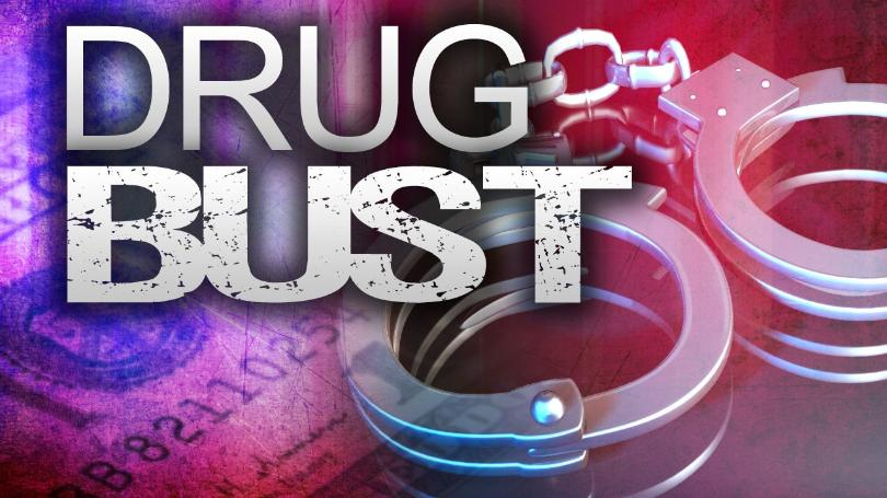 Six-Month Undercover Investigation Results in Arrests and Drug Seizure
