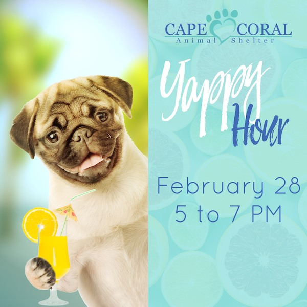 5 Things To Do This Weekend in Cape Coral (Feb 28 - Mar 1)