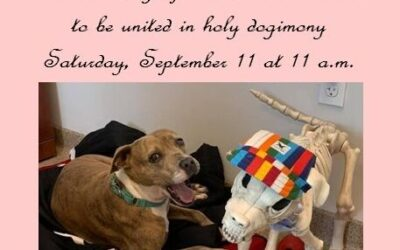LONG TERM RESIDENT ROSEANNE GETS MARRIED AT THE CAPE CORAL ANIMAL SHELTER