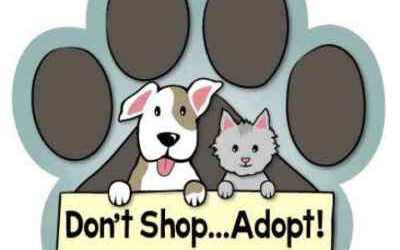 Lee County Domestic Animal Services celebrates Adopt a Shelter Dog Month